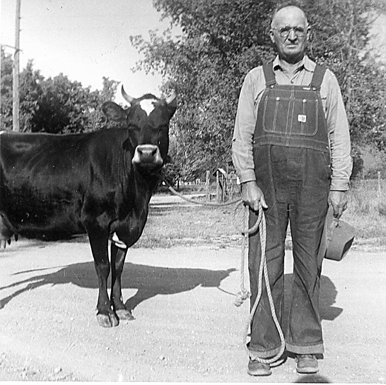 James Lund with his cow.