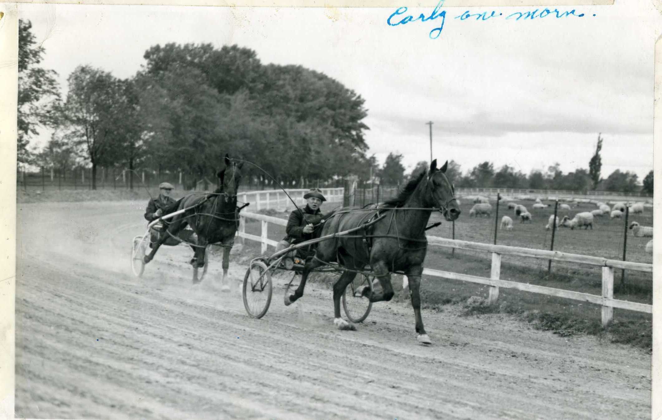 Noah and Guy training the horses early one morning about 1948, at Tautphis Park in Idaho Falls.